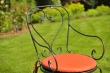 Garden chair MONTPELIER with armrests